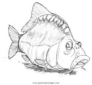 Karpfen 0 Gratis Malvorlage In Fische Tiere Ausmalen