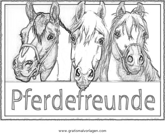 Pferdefreunde 1 Gratis Malvorlage In Beliebt04 Diverse Malvorlagen