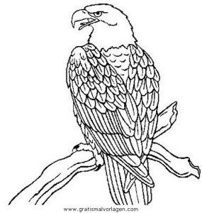 Adler 00 Gratis Malvorlage In Adler Tiere Ausmalen