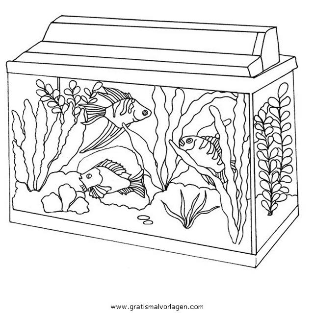 algen 1 gratis malvorlage in fische tiere  ausmalen