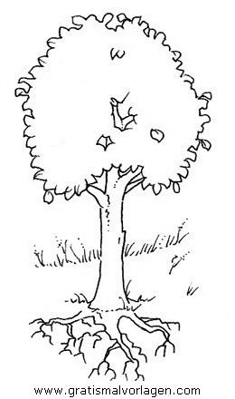 baume 02 gratis malvorlage in bäume, natur - ausmalen