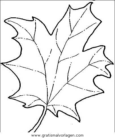 baume 12 gratis malvorlage in bäume, natur - ausmalen