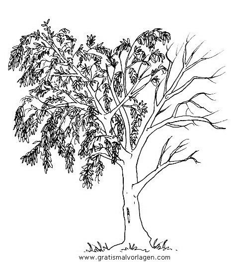 11 inspirational ausmalbilder bäume im herbst