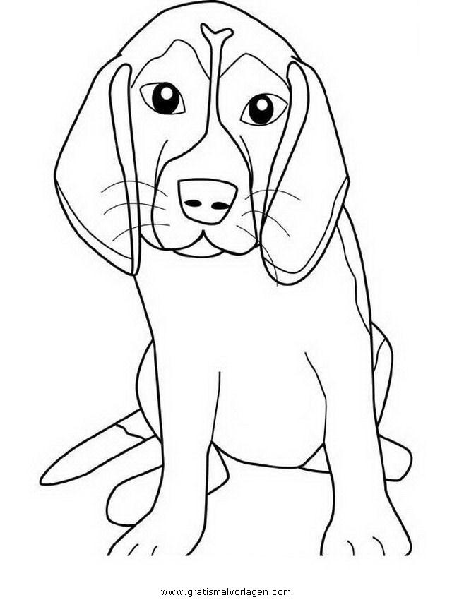 beagle gratis Malvorlage in Hunde, Tiere - ausmalen