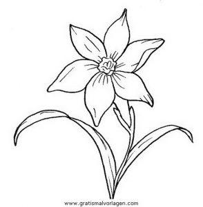 Malvorlage Blumen blumen 303