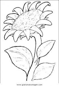 Blumen 304 Gratis Malvorlage In Blumen Natur Ausmalen