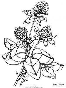 Malvorlage Blumen blumen 406