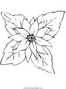Malvorlage Blumen blumen 422