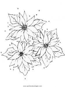 Malvorlage Blumen blumen 423