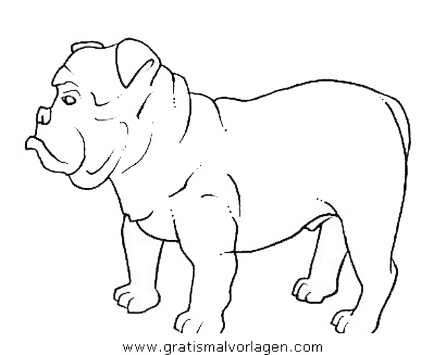 boxer 3 gratis malvorlage in hunde tiere  ausmalen