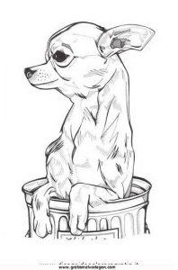 chihuahua 7 gratis Malvorlage in Hunde, Tiere   ausmalen
