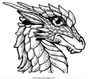 drachenkopfe 1 gratis malvorlage in drachen, fantasie