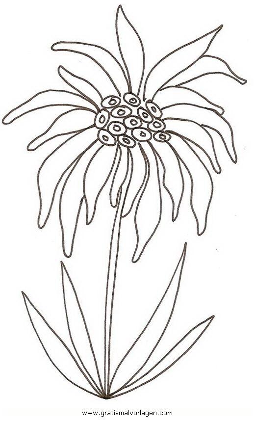 Galupy 1 Gratis Malvorlage In Comic Trickfilmfiguren: Edelweiss 1 Gratis Malvorlage In Blumen, Natur