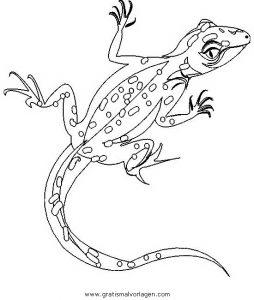 eidechse 7 gratis malvorlage in schlangen, tiere - ausmalen