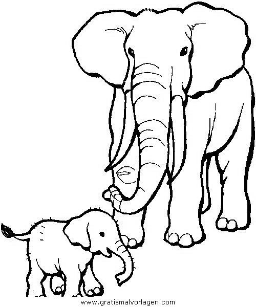 elefanten 13 gratis malvorlage in elefanten tiere  ausmalen