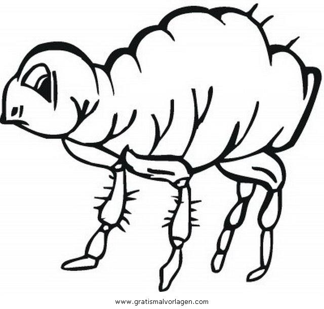 floh 1 gratis malvorlage in insekten tiere  ausmalen