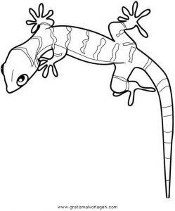 Gecko 1 Gratis Malvorlage In Schlangen Tiere Ausmalen