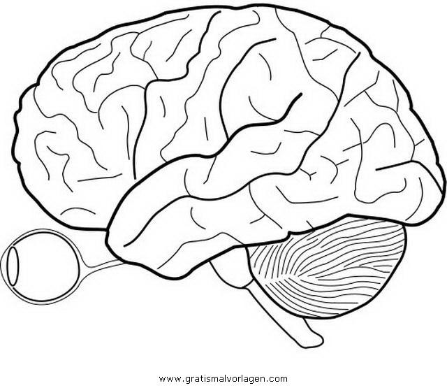 Galupy 1 Gratis Malvorlage In Comic Trickfilmfiguren: Gehirn 1 Gratis Malvorlage In Diverse Malvorlagen, Körper