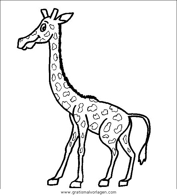 giraffen 06 gratis malvorlage in giraffen, tiere - ausmalen