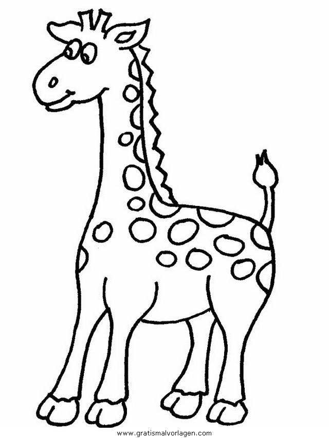 giraffen 11 gratis malvorlage in giraffen, tiere - ausmalen