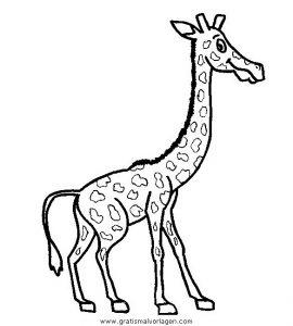 Malvorlage Giraffen giraffen 28