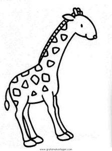 Malvorlage Giraffen giraffen 30