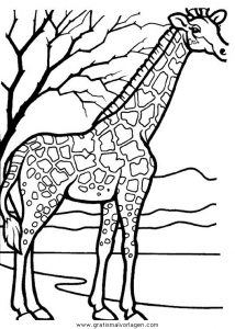Malvorlage Giraffen giraffen 35