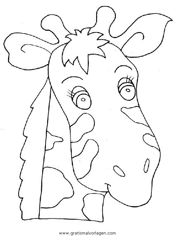 giraffen 37 gratis malvorlage in giraffen tiere  ausmalen