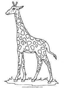 Malvorlage Giraffen giraffen 43