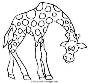 Malvorlage Giraffen giraffen 44