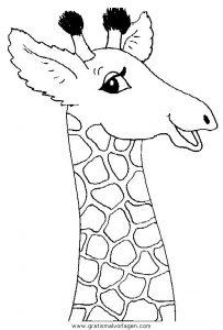 Malvorlage Giraffen giraffen 45