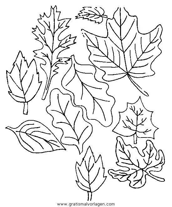 Herbst 51 Gratis Malvorlage In Herbst Natur Ausmalen