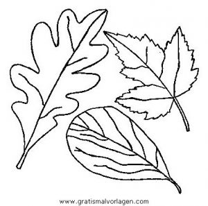 Autumm Tree Coloring Pages
