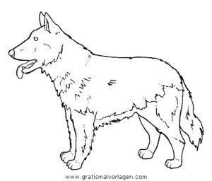 hunde 98 gratis malvorlage in hunde, tiere - ausmalen