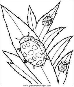 Insekten 49 Gratis Malvorlage In Insekten Tiere Ausmalen