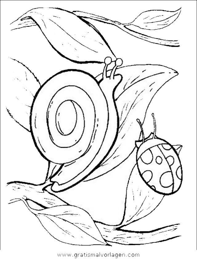 insekten 51 gratis malvorlage in insekten tiere  ausmalen