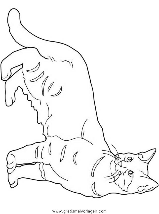 Katzen 117 Gratis Malvorlage In Katzen Tiere Ausmalen