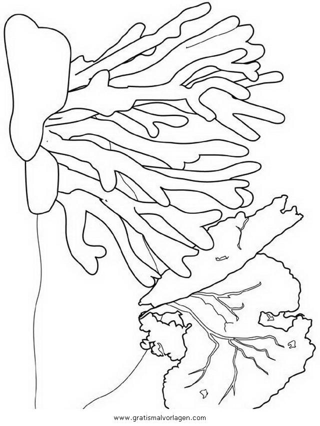 Koralle 14 Gratis Malvorlage In Fische Tiere Ausmalen