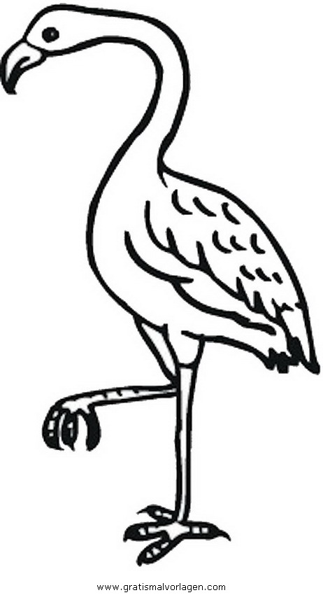 kranich 2 gratis malvorlage in tiere vögel  ausmalen