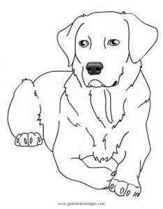 labrador 2 gratis Malvorlage in Hunde, Tiere   ausmalen