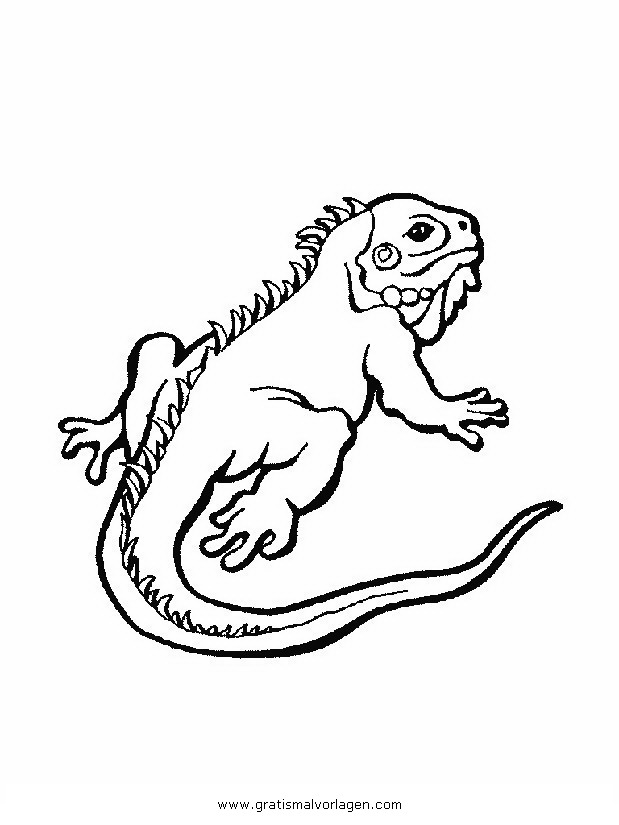 Galupy 1 Gratis Malvorlage In Comic Trickfilmfiguren: Leguan 1 Gratis Malvorlage In Tiere, Verschiedene Tiere