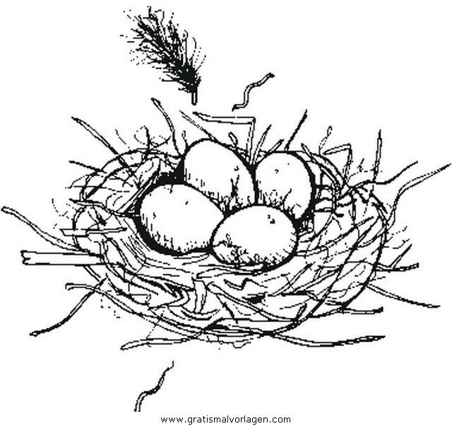 Nest gratis Malvorlage in Diverse Malvorlagen, Garten - ausmalen