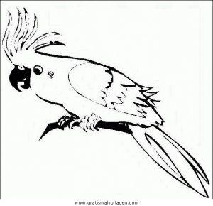 Malvorlage Papageien papageien 07