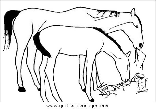 pferde 09 gratis malvorlage in pferde, tiere - ausmalen