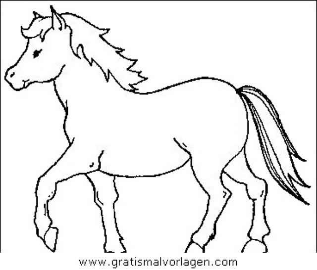 Pferde 11 Gratis Malvorlage In Pferde Tiere Ausmalen