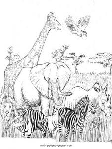 Safari 11 Gratis Malvorlage In Comic Trickfilmfiguren Disney