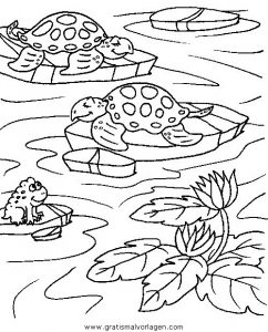Malvorlage Schildkröten schildkroten 28