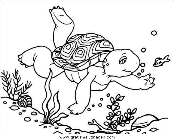 schildkroten 44 gratis malvorlage in schildkröten tiere