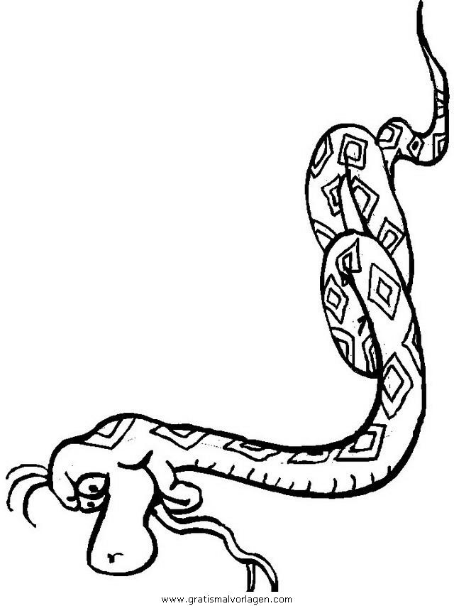schlangen 10 gratis malvorlage in schlangen tiere  ausmalen