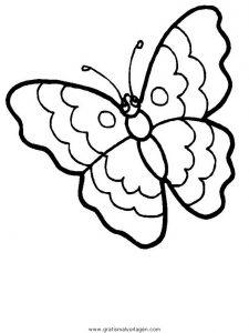Schmetterlinge 07 Gratis Malvorlage In Schmetterlinge Tiere Ausmalen